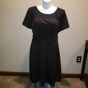 NWT - Lane Bryant Fit & Flare Dress